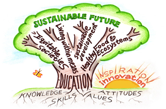 akt-as-1-sustainable-learning-platform-petrache-laura